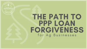 PPP Loan Forgiveness for Ag-3