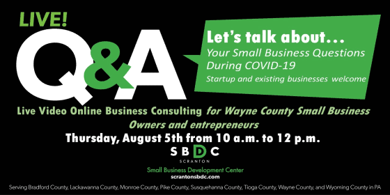 Live Q&A - Video Online Business Consulting for Wayne County