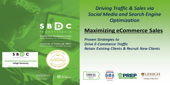 Maximizing eCommerce Sales: Driving Traffic and Sales Through Search Engine Optimization