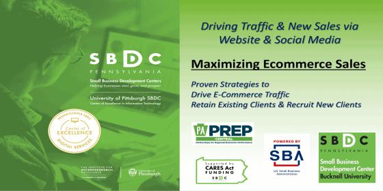Maximizing Ecommerce Sales: Driving Traffic & New Sales via Website and Social Media